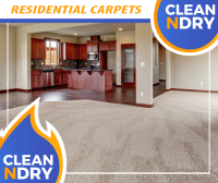 CARPET CLEANER ORLANDO