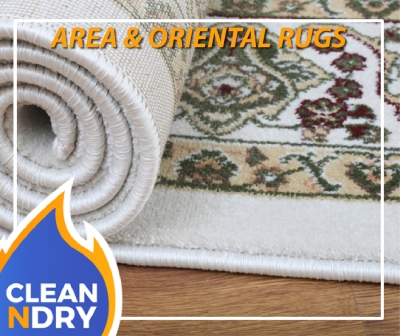 AREA RUG CLEANING ORIENTAL RUG CLEANING-01
