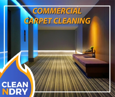 Commercial Carpet Cleaner, Tile & Grout, Fabric & Furniture Cleaner Orlando