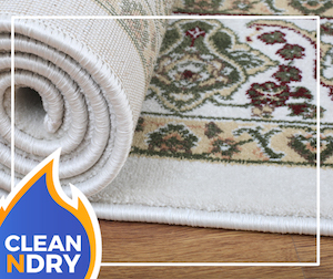 Carpet Cleaning Orlando Better Than