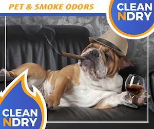 PET-AND-SMOKE-ODORS-Removal
